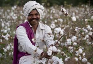 Productor de algodón