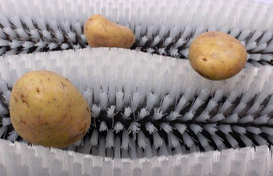 Aplicacion cepillo cilindrico rodillo limpieza frutas y verduras