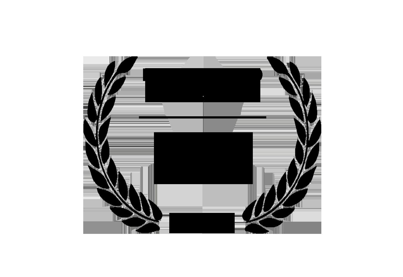 Mejor Largometraje Ficción Inclús 2019