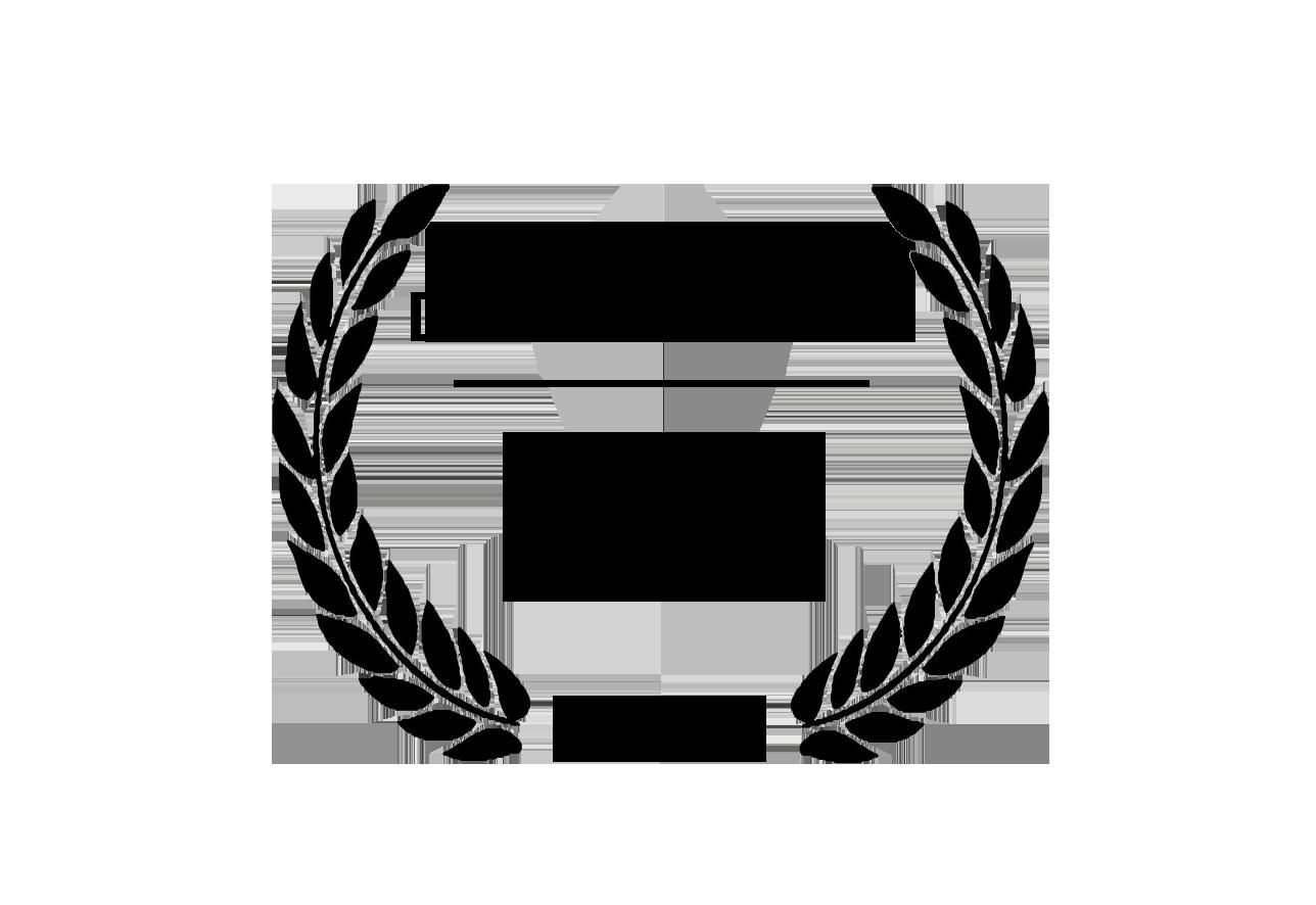 Best Documentary Feature Film Inclús 2019