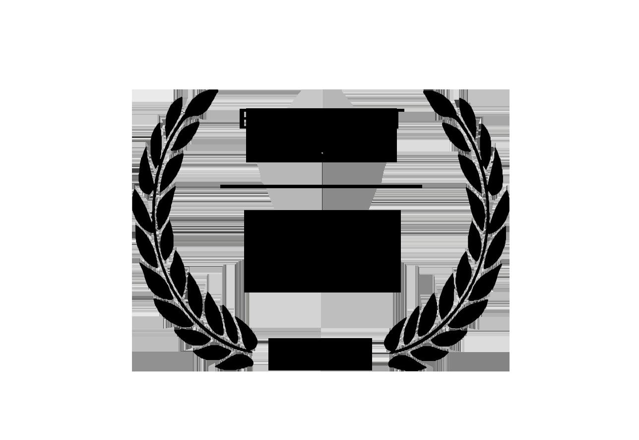 Best Fiction Short Film Inclús 2019