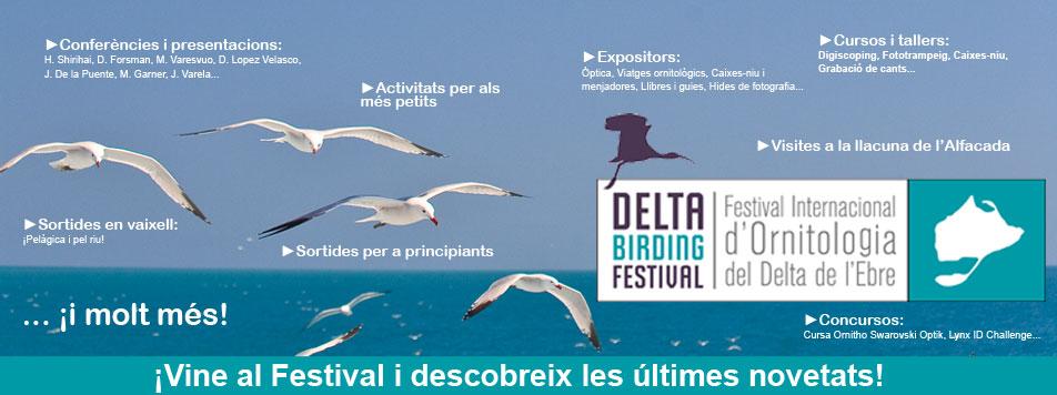 Delta Birding Festival 2015